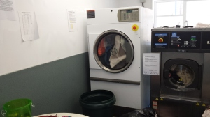 A LOT of washing goes on at an animal sanctuary. I set a scene between Jane and Angharad in the laundry room.